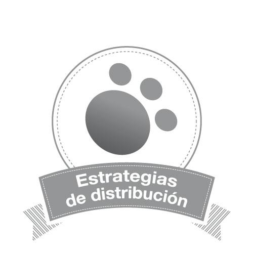 Marketto Gadgets. Estrategias de distribución