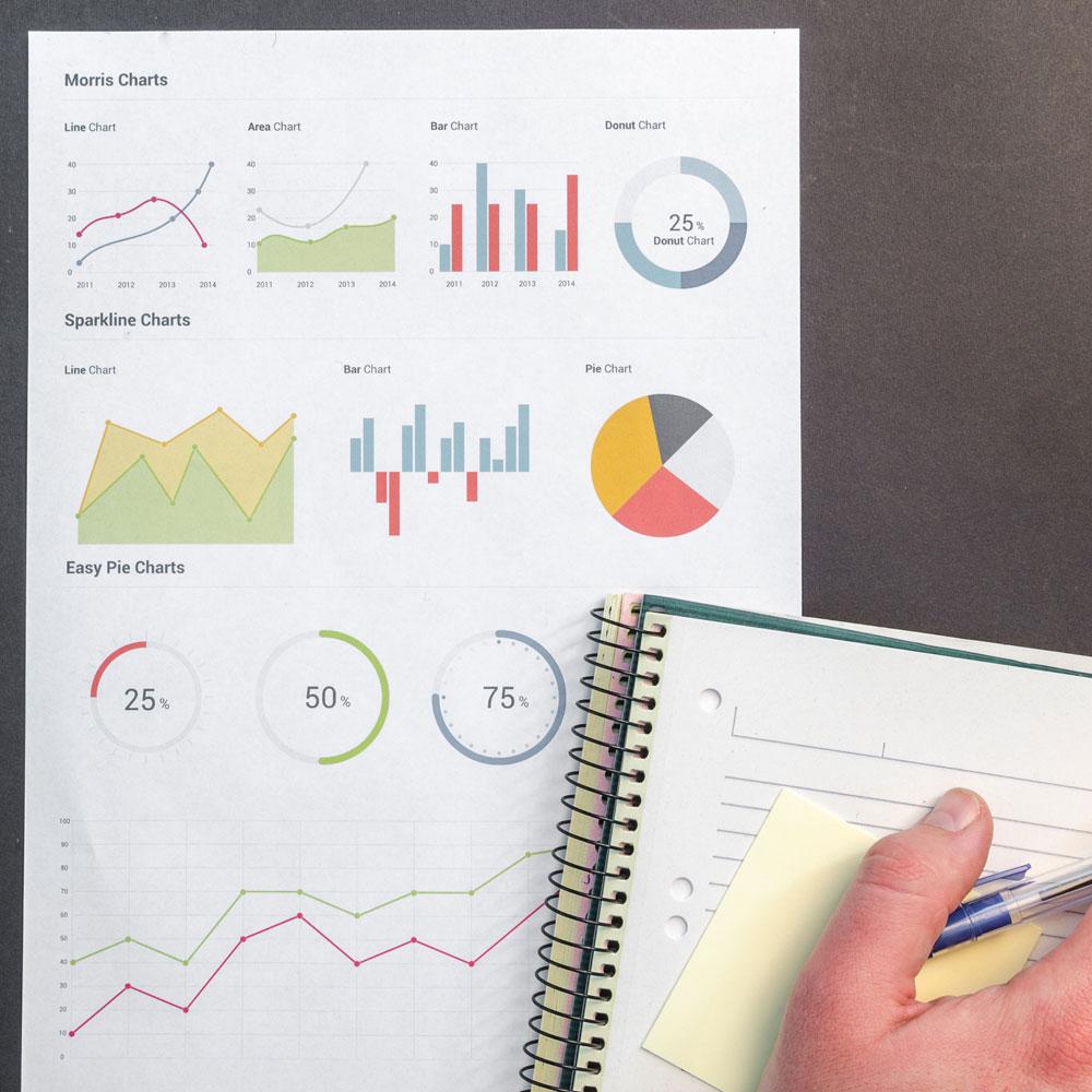 Investigaciones y estudios de mercado